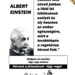 Oki kártya: Einstein