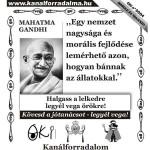 Oki kártya: Gandhi