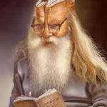 Egér és a bölcs